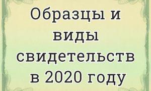 Образцы свидетельств в 2020 году: о рождении, регистрации, о собственности, на квартиру, о браке, на право, смерти, о расторжении брака, на наследство, на автомобиль