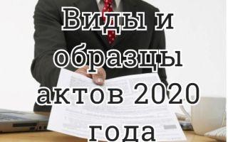 Образцы, виды, закон и правила составления акта в 2020 году